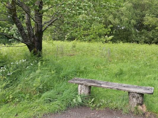 Restful spot.